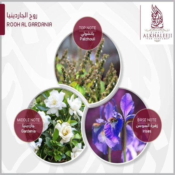 ALBAIT ALKHALEEJI finel 219 1